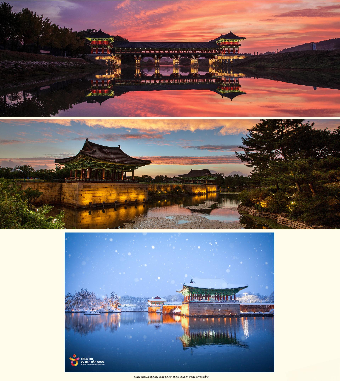 Hàn Quốc có một Daegu gieo nhớ thương như thế! - 15