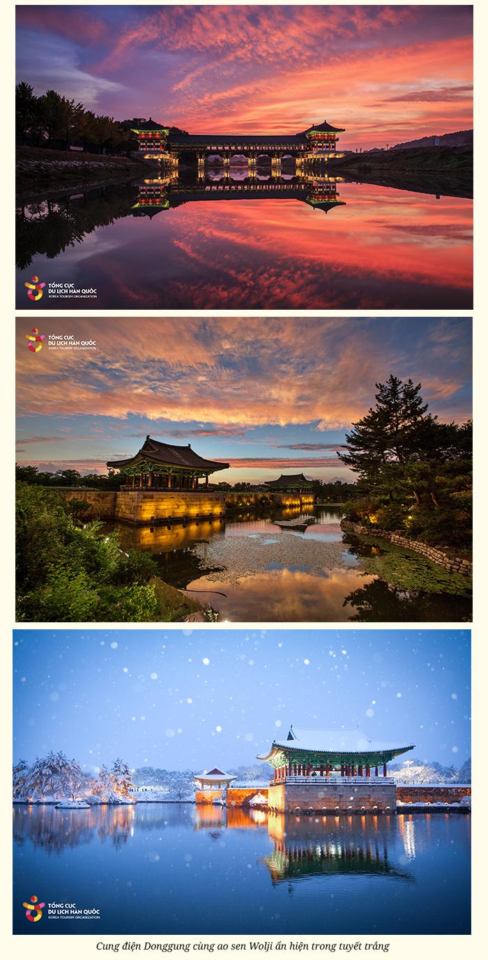Hàn Quốc có một Daegu gieo nhớ thương như thế! - 16