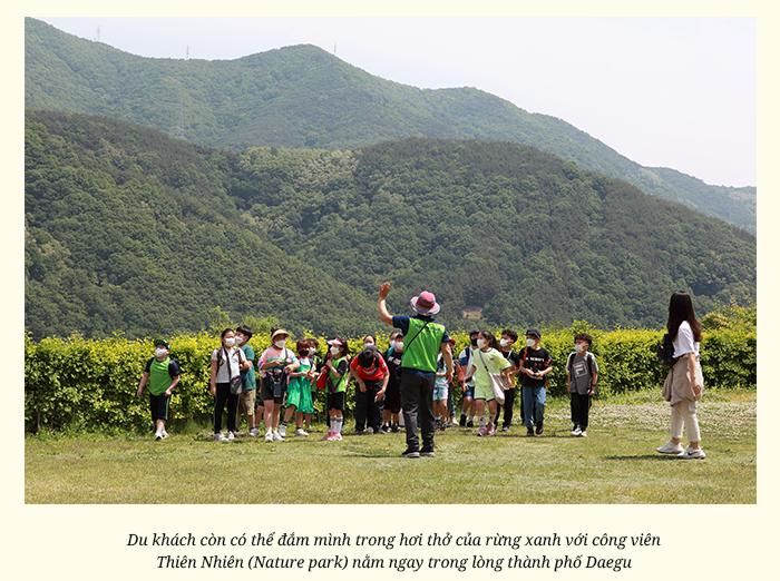 Hàn Quốc có một Daegu gieo nhớ thương như thế! - 25