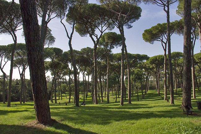 Villa Doria Pamphili - Rome, Ý: Villa Doria Pamphili là công viên lớn nhất của Rome,có kiến trúc tuyệt đẹp với những khu vườn được cắt tỉa cẩn thận và tỉ mỉ, cùng các bức tượng và bồn hoa lớn như một lời nhắc nhở về lịch sử hào hùng của Rome.