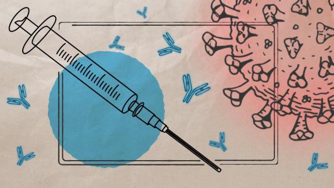2 lý do quan trọng khiến vaccine ngừa COVID-19 không có hiệu quả trọn đời? - 1