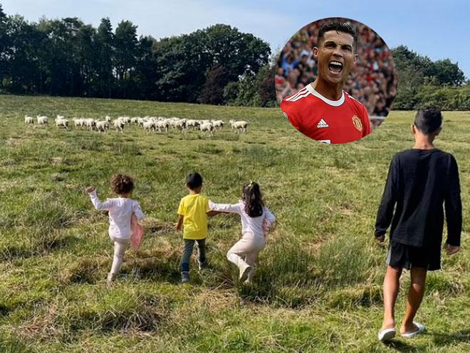 Ngã ngửa lý do Ronaldo chuyển nhà khẩn cấp, đồng đội cũ Evra trêu chọc - 1