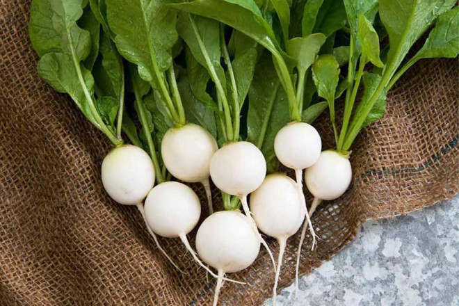 """Củ cải trắng cực tốt nhưng có thể hóa """"chất độc"""" khi kết hợp với những thứ này - 1"""