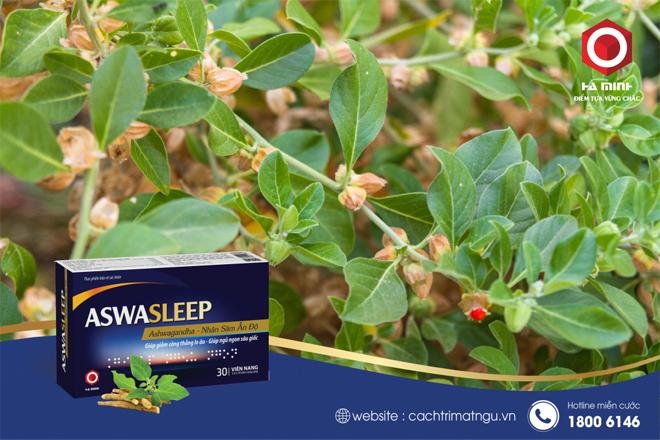 Aswasleep - bí quyết ngủ ngon từ sâm Ấn Độ thượng hạng - 1