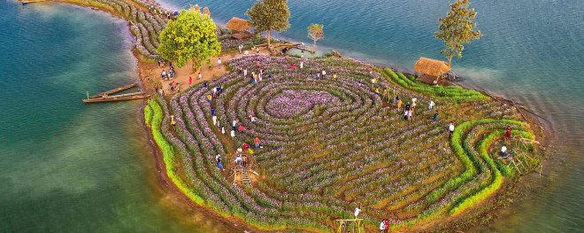 Đảo hoa Kon Trang Long Loi - Có nơi nào đẹp hơn? - 1